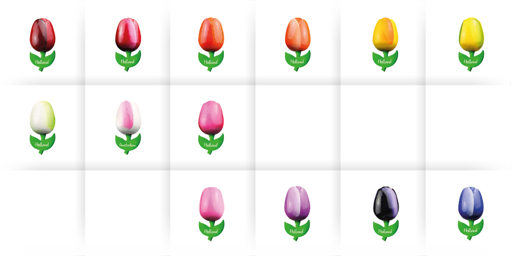 small tulip magnets