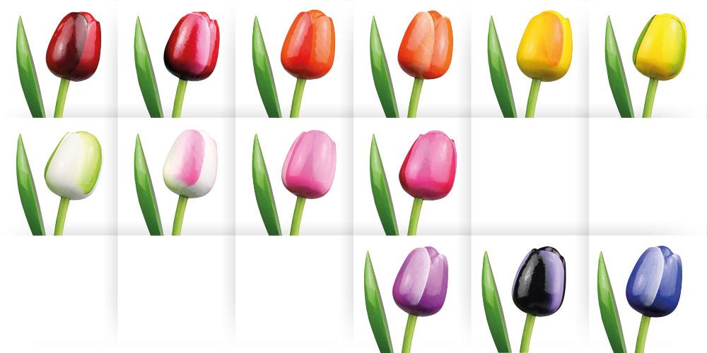 tulpen op stam groot